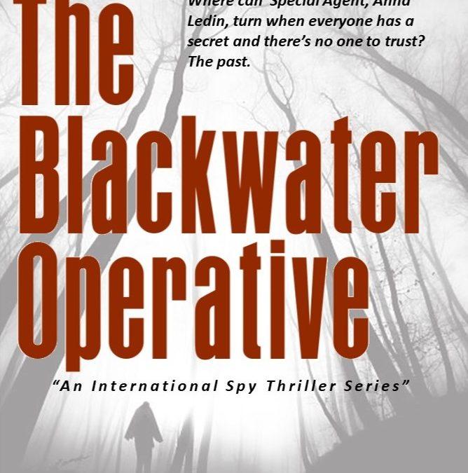 The Blackwater Operative | L.L Abbott