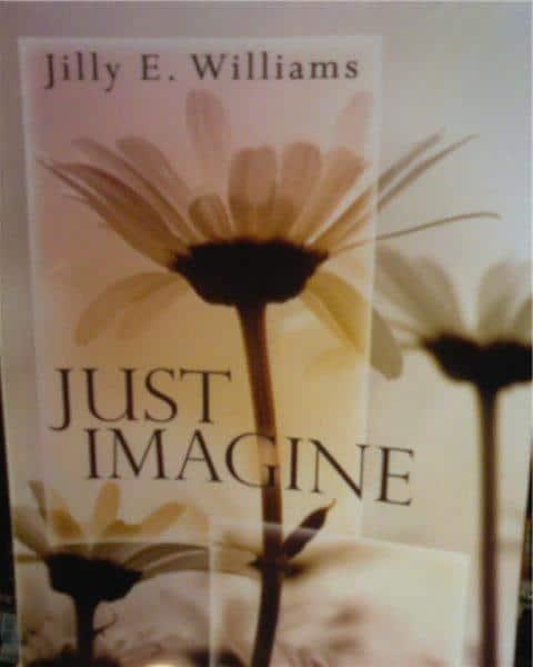 Jilly E Williams Just Imagine book