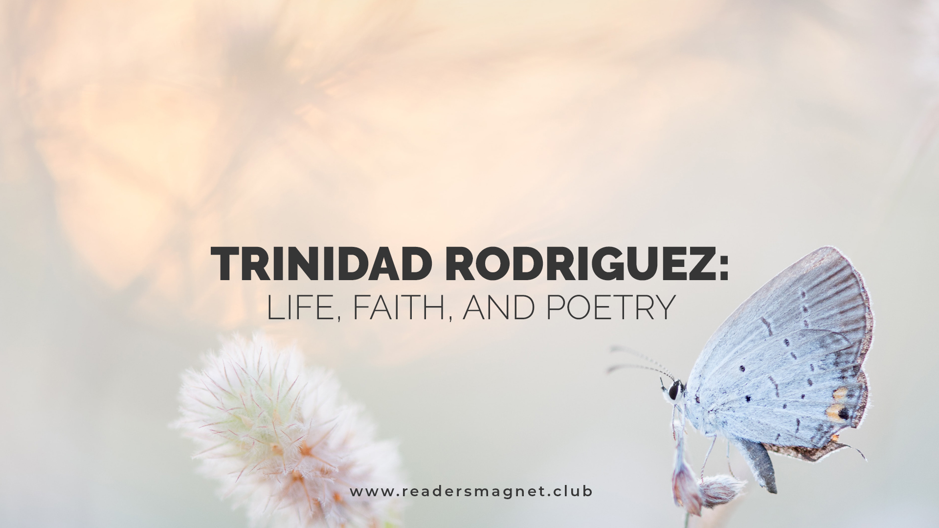 Trinidad Rodriguez Life Faith and Poetry banner