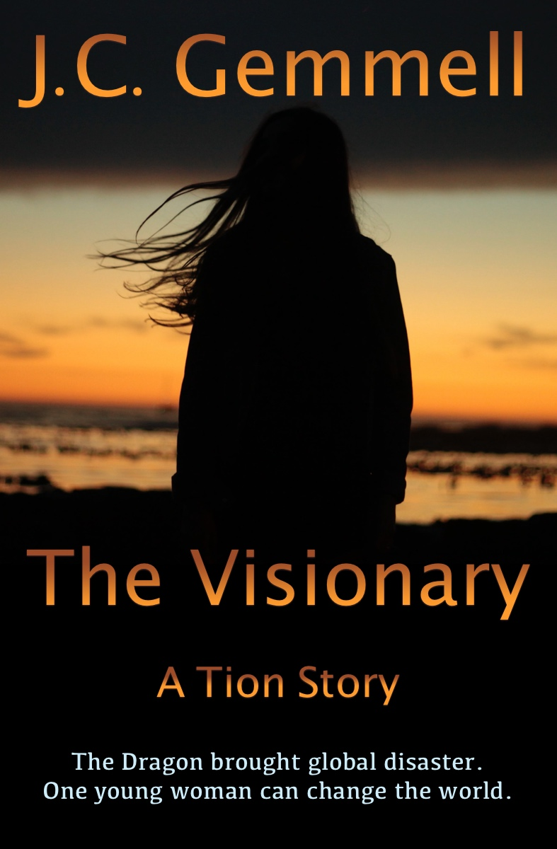 The Visionary by J.C. Gemmell