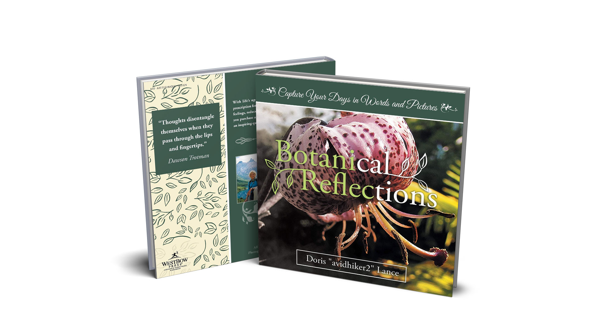Book-Feature-Botanical-Reflections-by-Doris-Lance banner