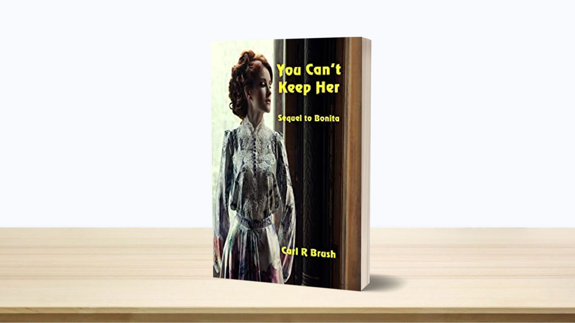 Book-feature-you-cant-keep-here-carl-r-brush banner